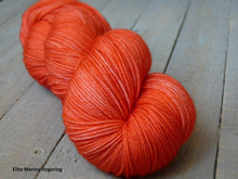 Load image into Gallery viewer, Tangy Peach - Purity collection - Elite Merino fingering - Fall for November yarns