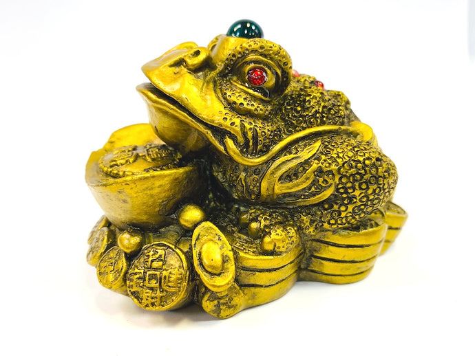 Feng Shui Lucky King Frog on Coin and Ignot [colour]- Hautie UK, #Nightfashion | #Underfashion
