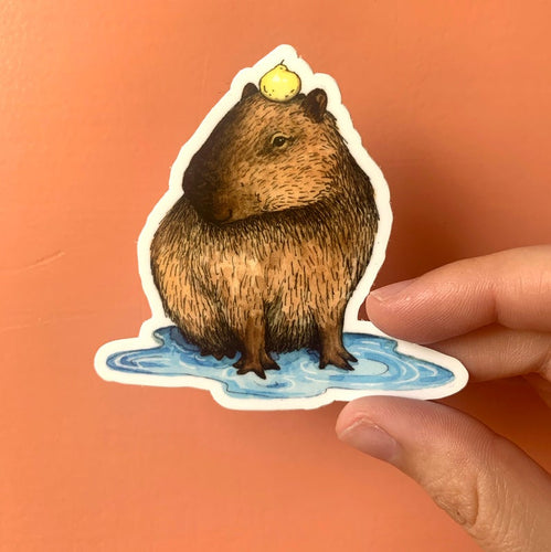 Capybara Puddle Sticker