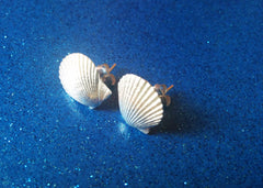 Mermaid Sea Shell Stud Earrings