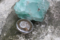 Ammonite Fossil Ring - ready to ship size 6.5