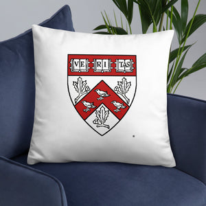 Divinity School 2020 Throw Pillow
