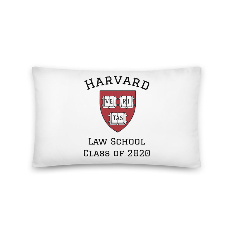 Law School Class of 2020 Throw Pillow