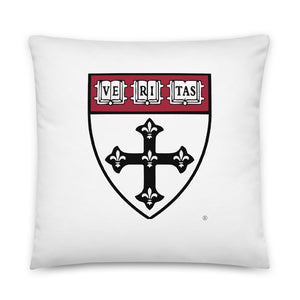 S.of Public Health 2020 Pillow