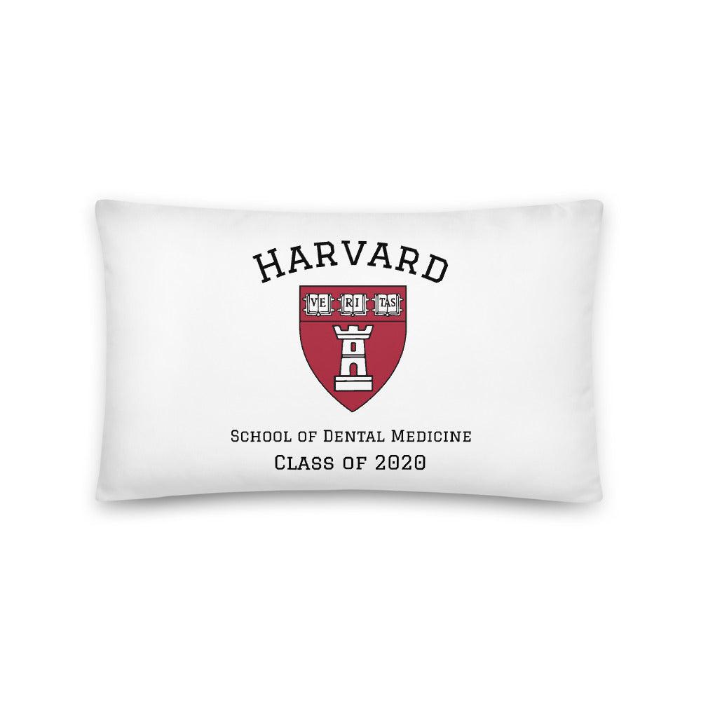 S.of Dentistry Class of 2020 Pillow