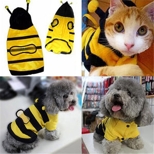 Pet Clothes. Bee costume