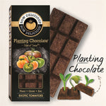EXOTIC TOMATO Planting Chocolate