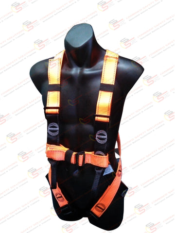 H101 Essential Harness (Basic entry level)