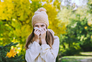 The Fight Against Fall Allergies