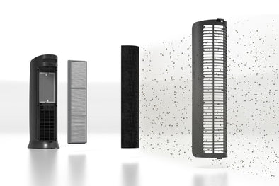 How Often to Replace Air Purifier Filters