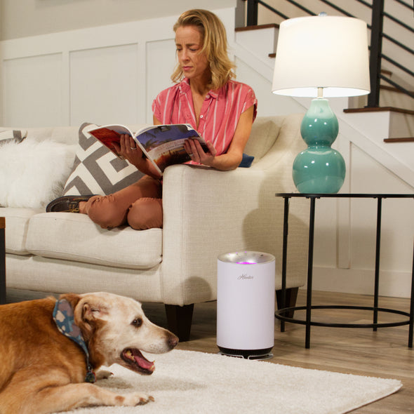 Hunter HP125 AirX EcoSilver HEPA Digital Air Purifier, White, Sitting on Living Room Floor with Dog