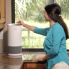 Hunter HP400 Cylindrical Tower Air Purifier for Kitchen Counter