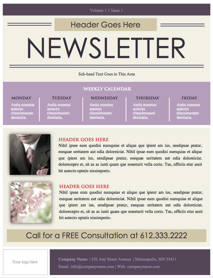 Event Planner Newsletter Template Microsoft Word File DIY – Business Newsletter