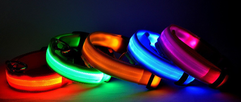 glow pets led dog collar