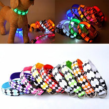 Load image into Gallery viewer, Glow Pets 'Fido's Favorite' Patterned LED Dog Collar