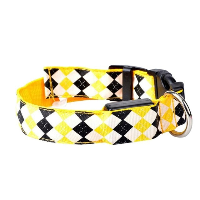 Glow Pets 'Fido's Favorite' Patterned LED Dog Collar