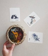 Load image into Gallery viewer, Memory/Snap Australian Animal Playing cards