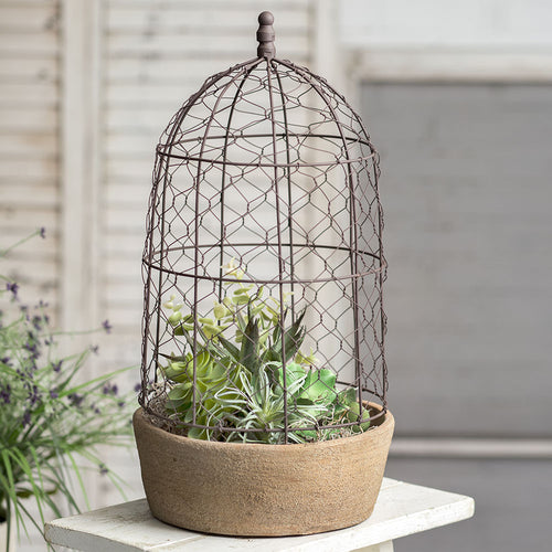 Tall Chicken Wire Cloche with Terra Cotta Pot