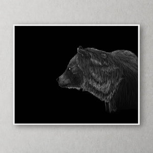 Bear Black & White Portrait