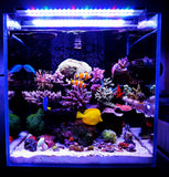 CHIHIROS A Series | A901M Marine LED Light | For 90cm Tanks | App Control