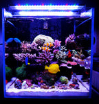 A Series | A601M Marine LED Light | For 60cm Tanks | WiFi Control