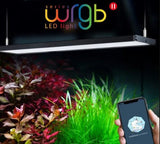CHIHIROS WRGB II Series | WRGB 2 45 Planted Aquarium LED Light | For 45-60cm tanks | Wireless App Control