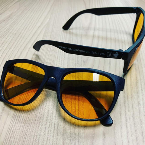D-D Coral View Glasses