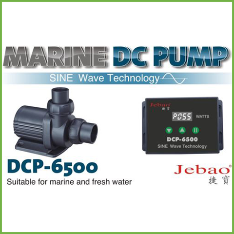 Jebao - DCP-6500 | Variable Return Pump