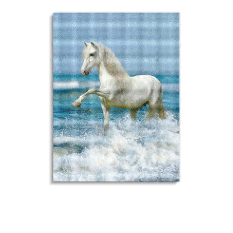 Broderie Diamants Cheval <br> Pelage Blanc