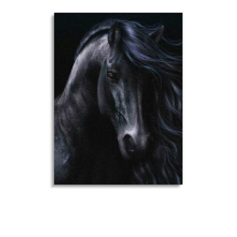 Broderie Diamants Cheval <br> Tête de Frison