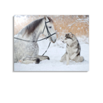 Broderie Diamants Cheval <br> Petit Husky