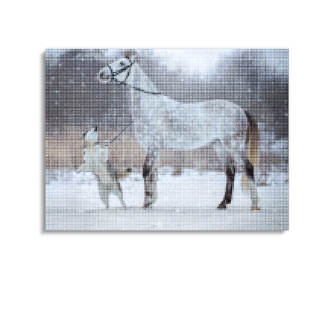 Broderie Diamants Cheval <br> Gris Pommelé