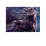 Broderie Diamants Cheval <br> Frison Obscur