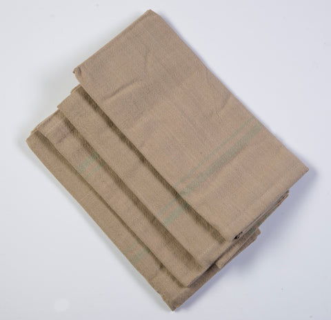 Harvest table set of 4 napkins with boarder in light mint