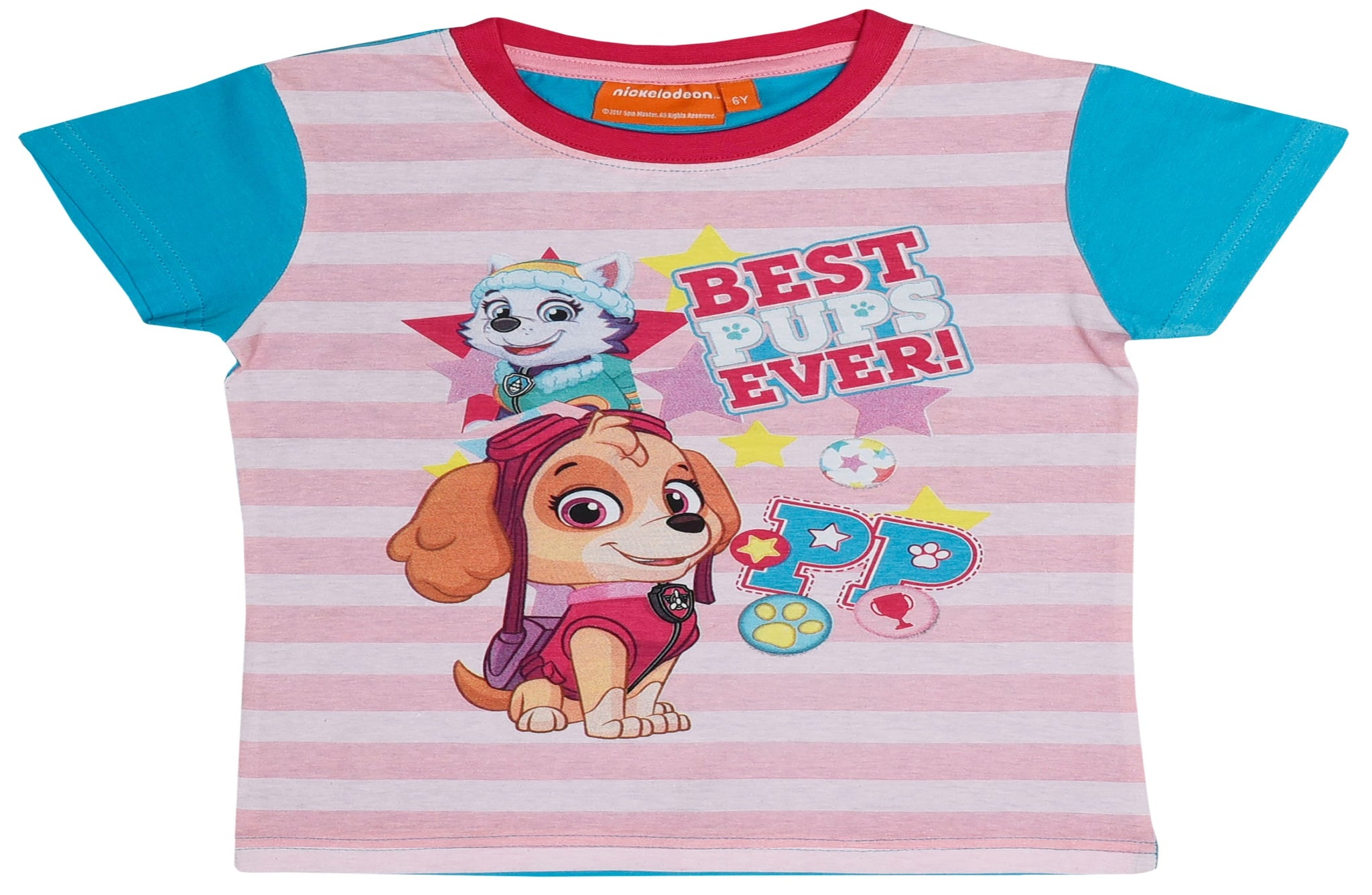 Paw Patrol Skye and Everest with blue t-shirt