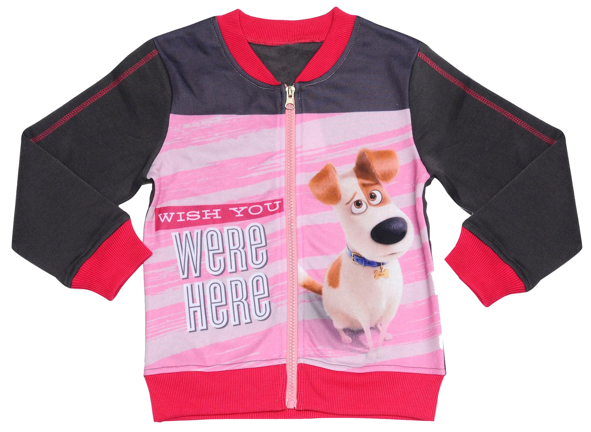 The Secret Life of Pets Max jumper with zip fastening