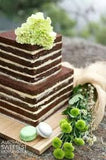 Naked Square Cake 2 tier