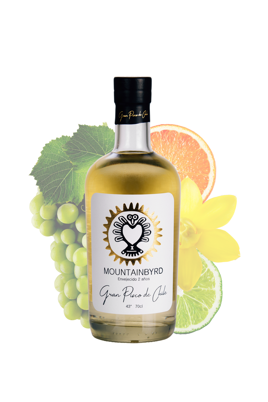 mountainbyrd Gran Pisco de Chile, Envejecido 2 años, 700ml