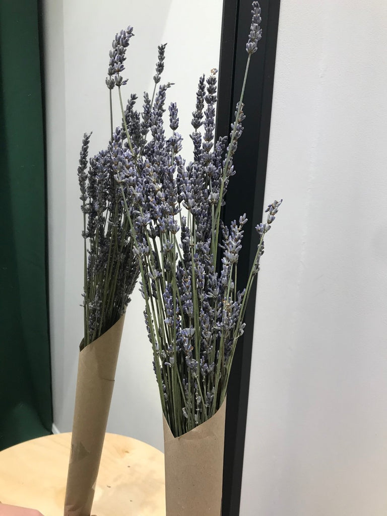 Dried Lavender Bunch - 30cm