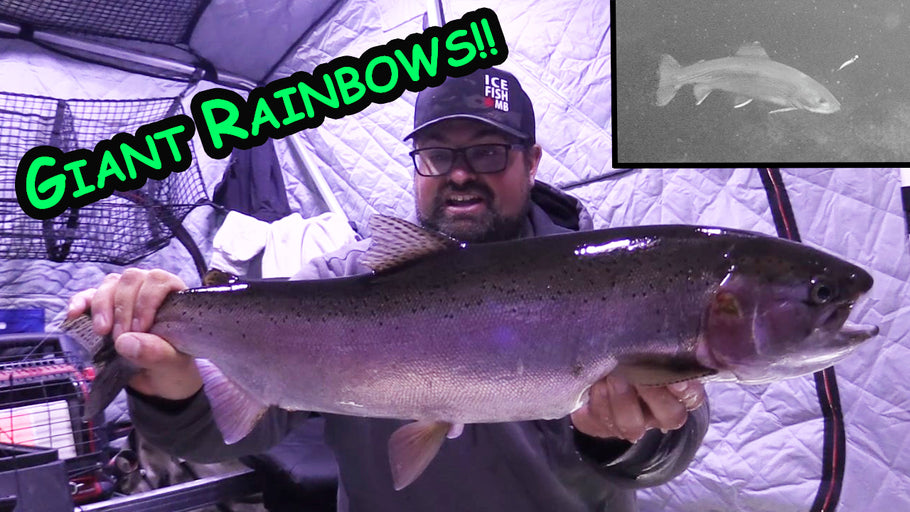 Northern Manitoba | Giant Rainbows!!