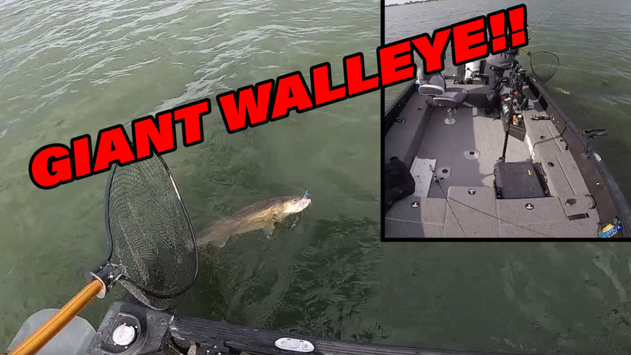I Caught a GIANT Walleye!!