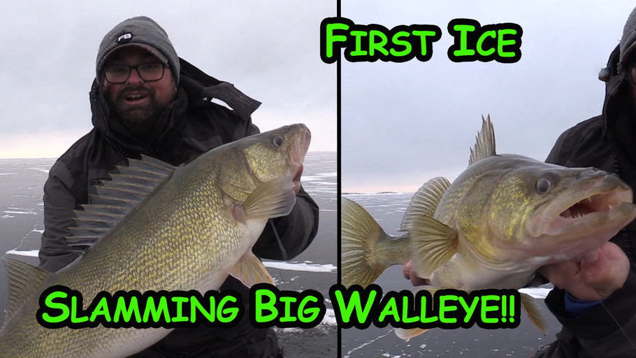 Early Ice for GIANT WALLEYE! (Back to Back)