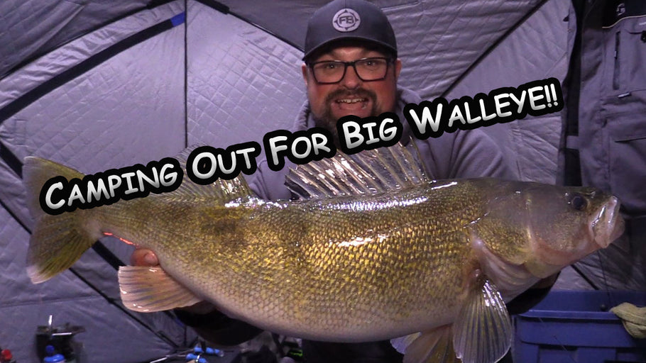 Where are the BIG Walleye?