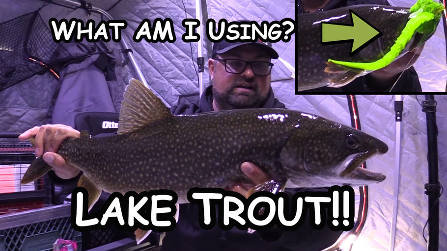 Ice Fishing Lake Trout | Ugly Green Lure!