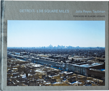 Load image into Gallery viewer, Detroit: 138 Square Miles