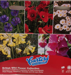 "Saatgut, Blumensamen ""British Wild flower collection"" 1 Tütchen - British Moments"