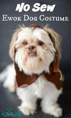 Shih Tzu wearing Ewok Halloween costume