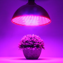 Load image into Gallery viewer, LED Grow Light  LED Grow Light