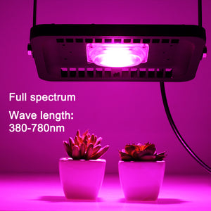 Waterproof Full Spectrum Growth Lamp