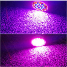 Load image into Gallery viewer, LED Plant Grow Light Bulb